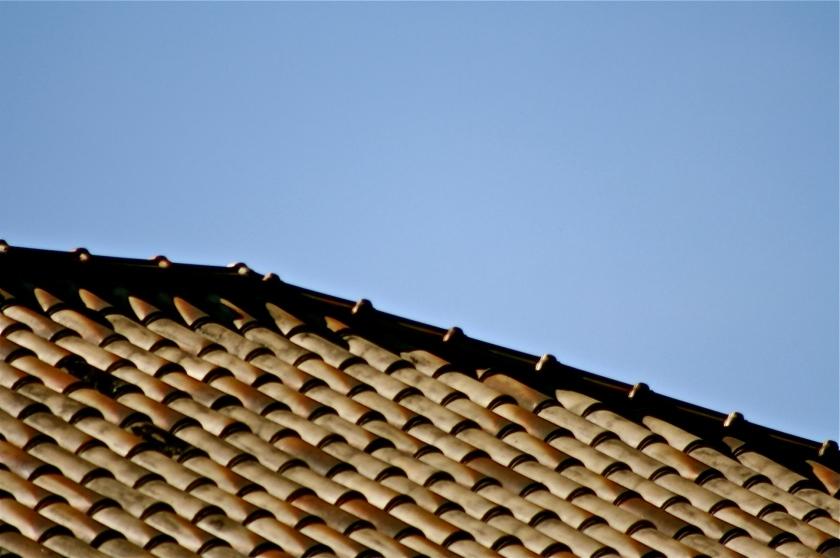 Telhado, por Edison Veiga