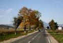 Estrada romena #2, por Edison Veiga